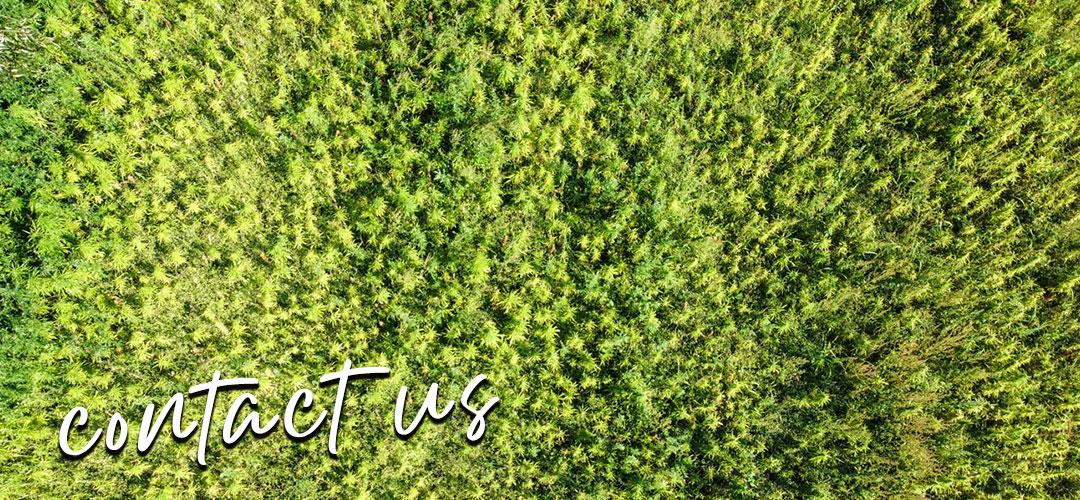 Titelbild für Kontakte